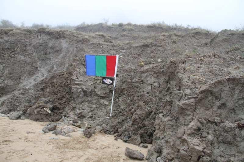 APM_EVA_BC_flag