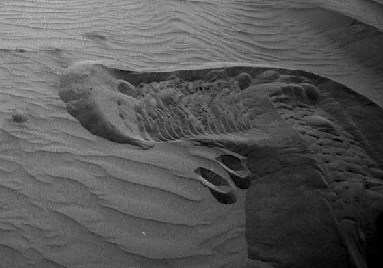 mars-curiosity-rover-sand-dune-bagnold-full détail