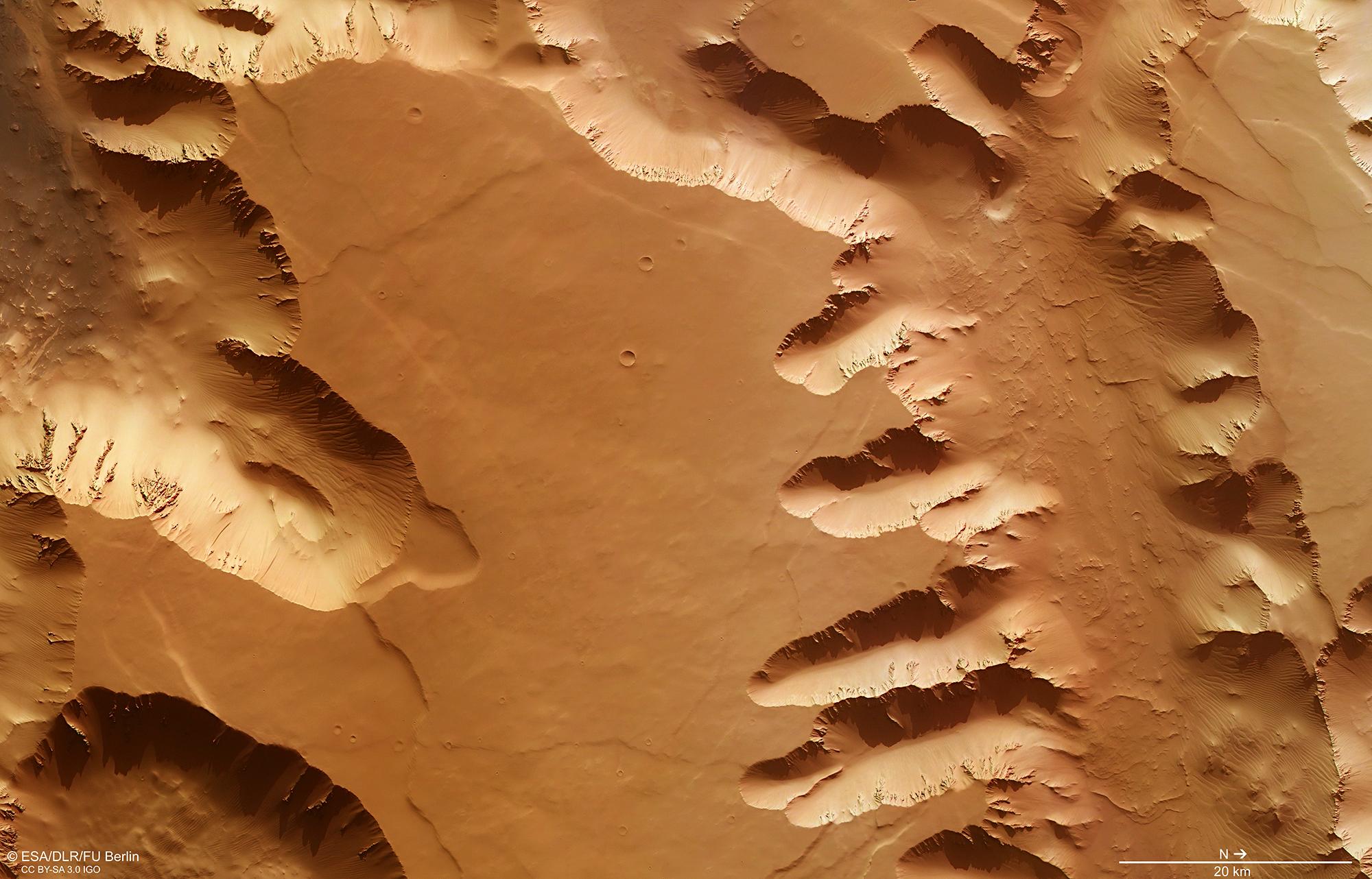 Noctis_Labyrinthus_plan_view