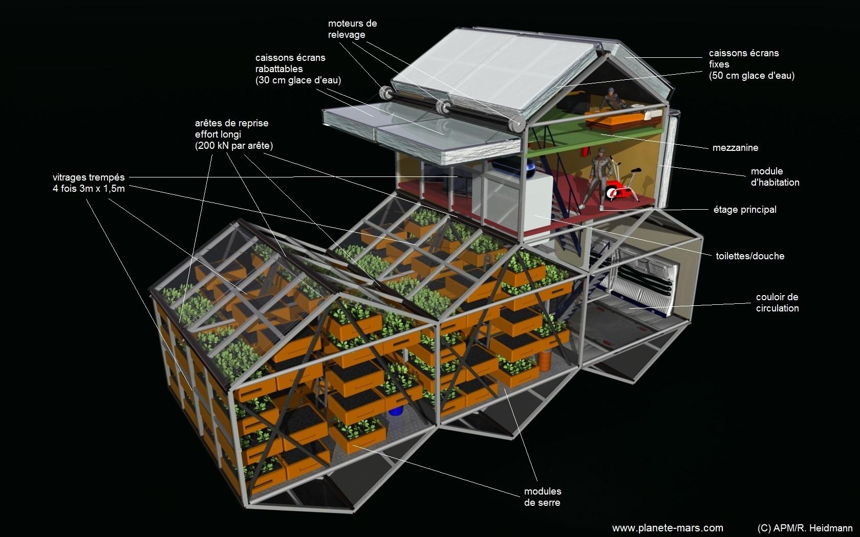 Unité d'habitation, avec deux modules de serre, pour deux résidents. Les cultures sont représentées en terre, dans des bacs, mais il se pourrait qu'on opte pour le mode hydroponique (aspect non traité ici). Nota: les «carènes» sont représentées en réalisation acier; les serres sont supposées ne pas nécessiter d'écrans anti-SPE (rabattables).